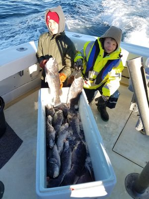 Judah Berman and Eric Summers with a haul of blackfish and other wreck species that they caught while fishing aboard the Blue Fin IV charter boat out of Montauk recently. Capt. Michael Potts