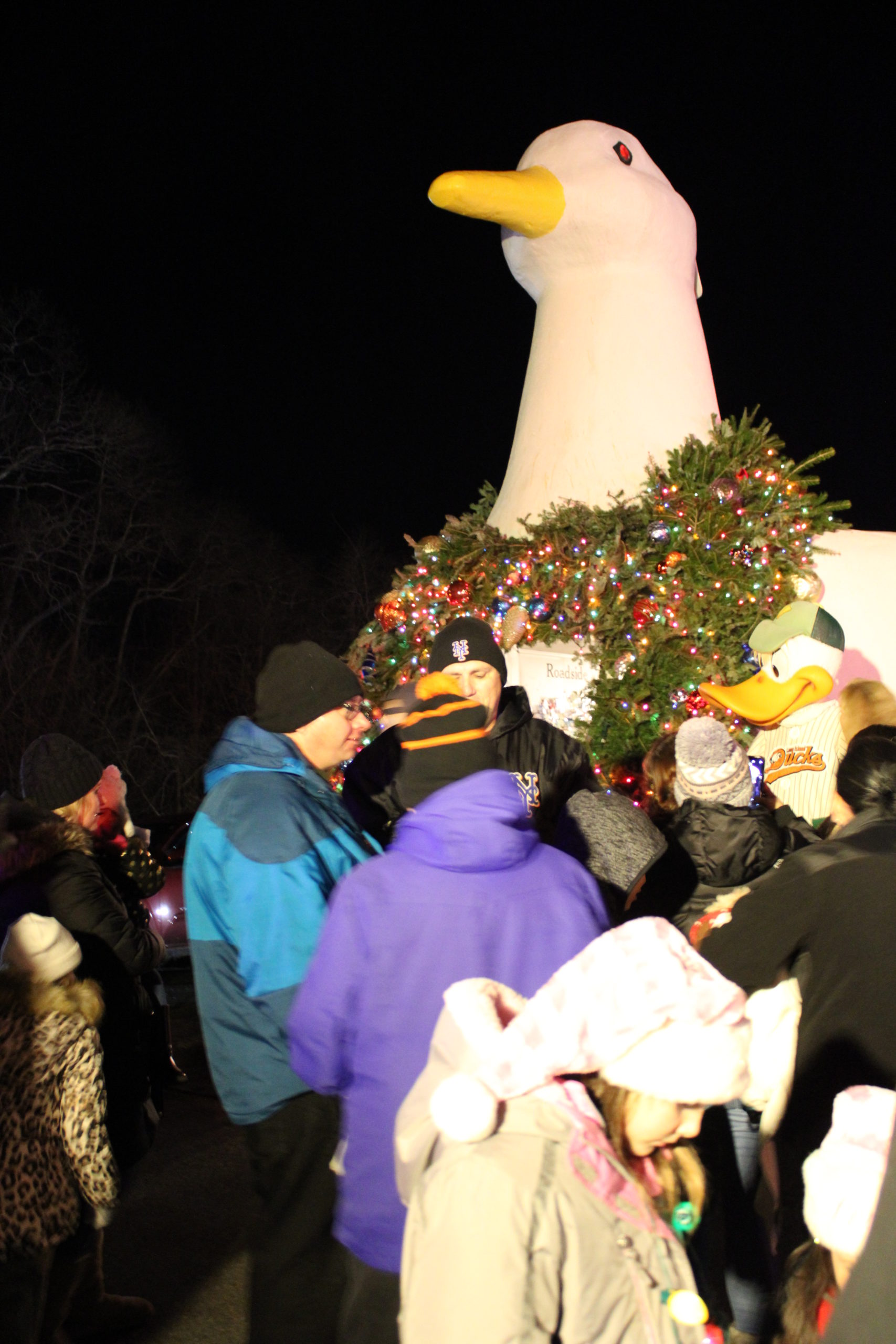 The Big Duck lighting in Flanders was on Monday night.