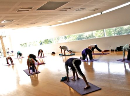 Yoga for Fighters and Survivors