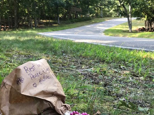 A bouquet of flowers placed near the corner of Terry's Trail and Alewife Brook Road in honor of Hallie Ulrich