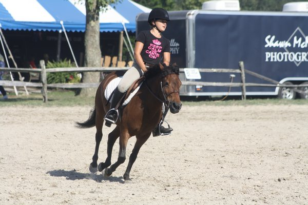 A pony takes a nap in the schooling ring. CAILIN RILEY