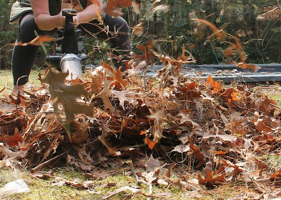 East Hampton Village plans to regulate gas-powered leaf blowers and other loud landscaping equipment. PRESS FILE