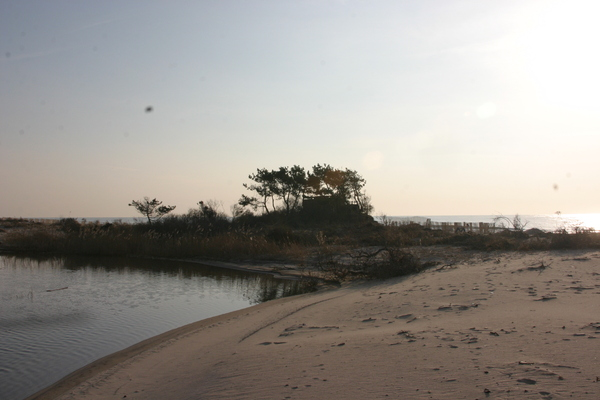 The house sat on a strip of sand between the ocean and Wainscott Pond barely 200 feet wide in calm weather.