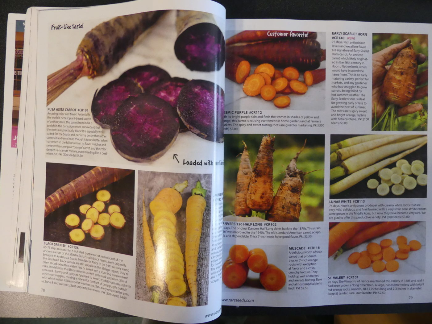 The Whole Seed Catalog has pages of exquisite color pictures, descriptions and planting instructions for hundreds and hundreds of open-pollinated veggie and garden seeds. ANDREW MESSINGER