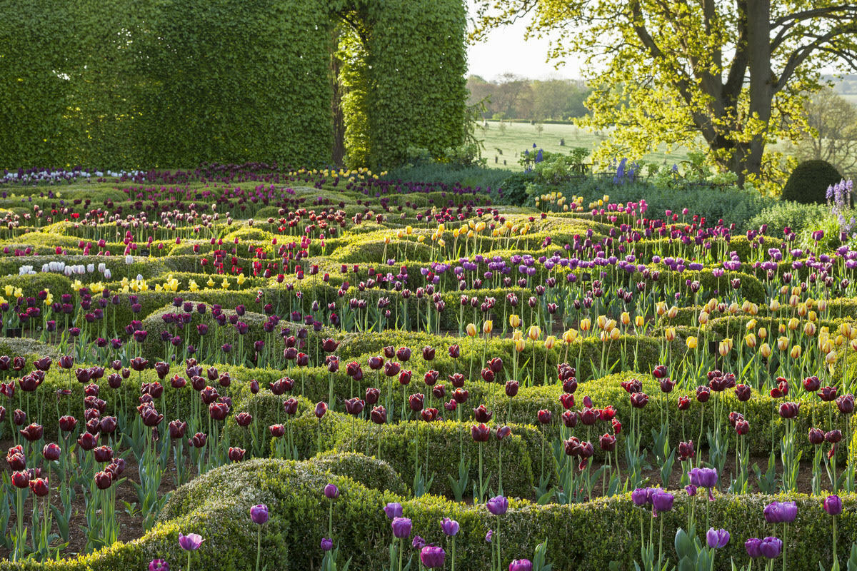 Private Cotswolds garden. ©MMGI ANDREW LAWSON