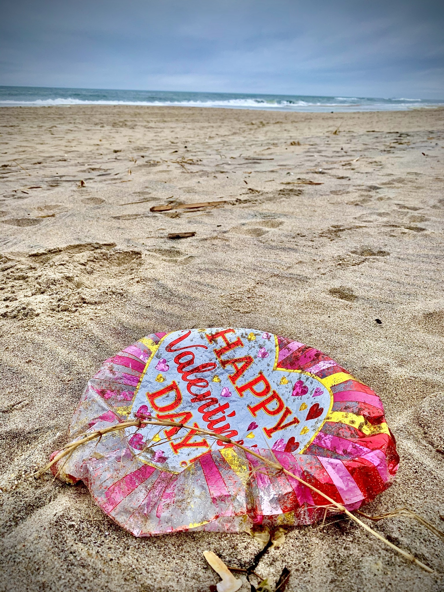 Southampton Town Board members are considering a ban on the sale of balloons filled with gas lighter than air. COURTESY ANTHONY ARDITO