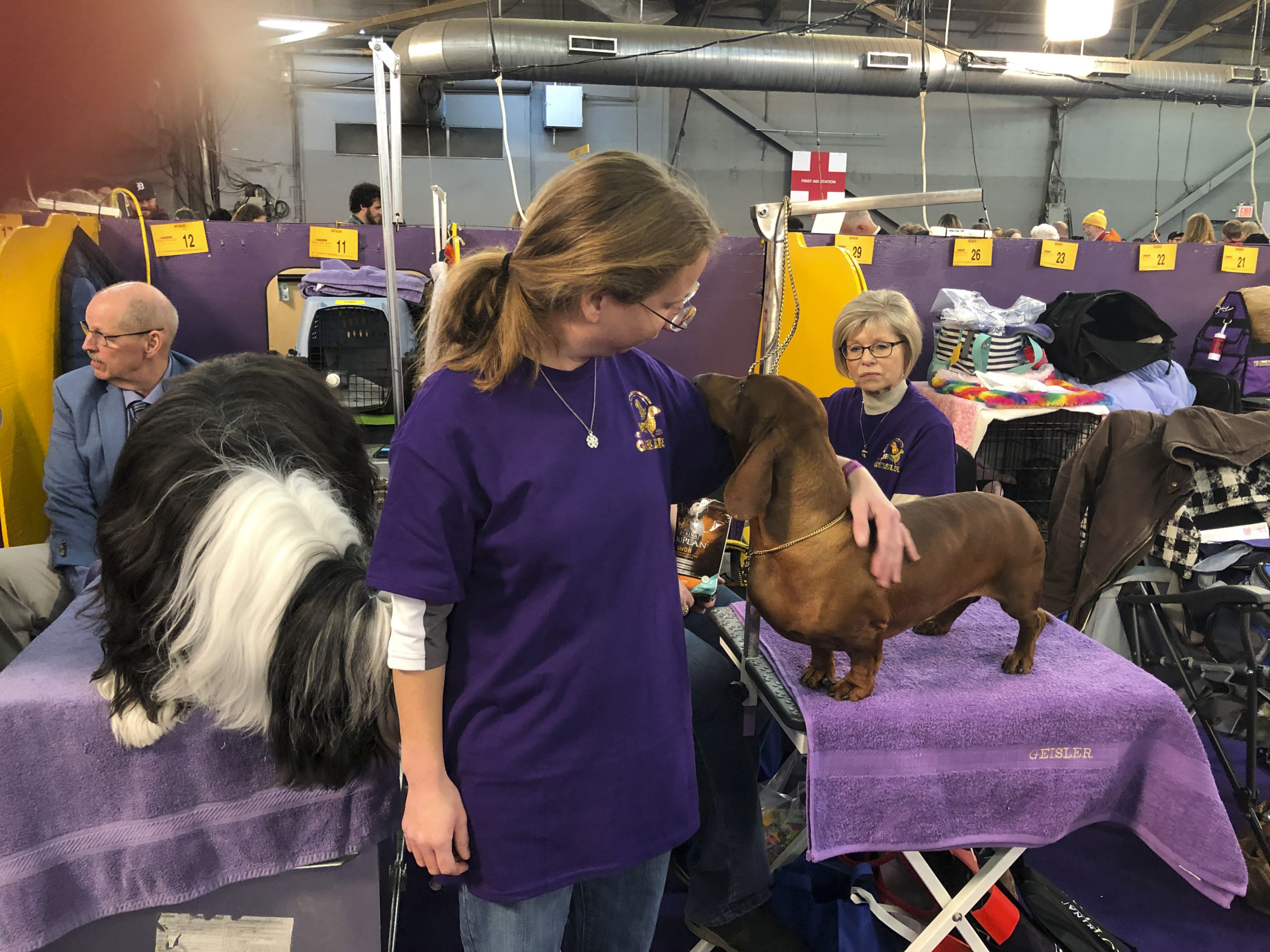 Southampton High School alum Alex Geisler with her Smooth Haired Dachshund, Hammer, in the benching area of the Westminster Dog Show. SHELLY BORKOSKI