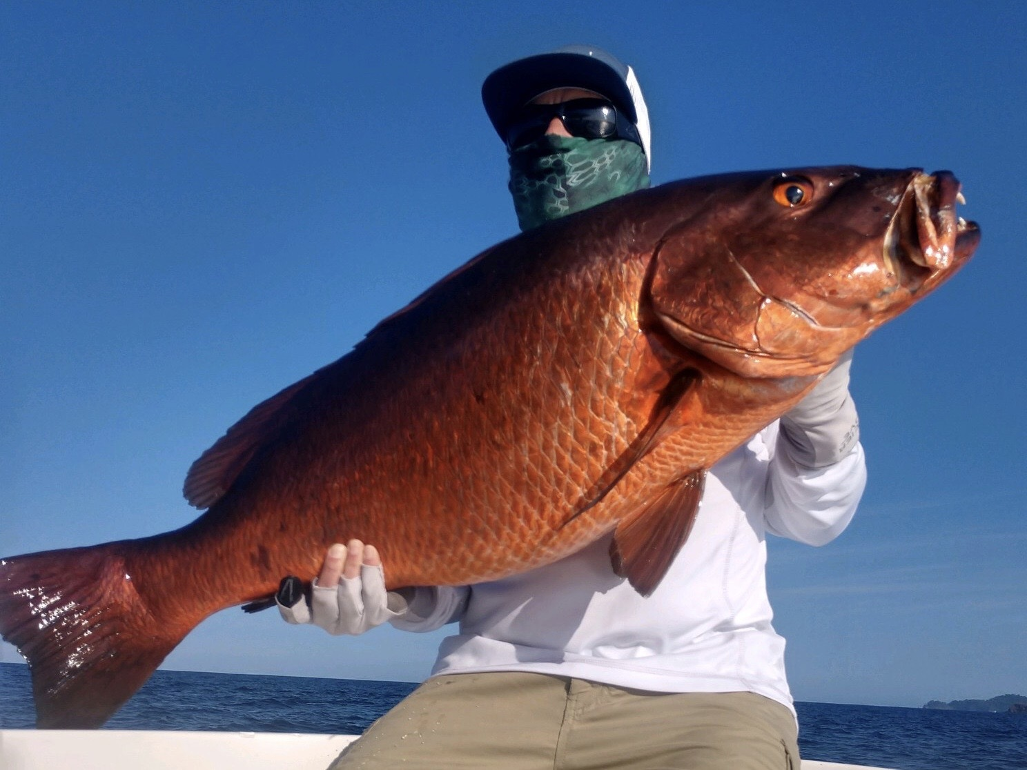 Dean Foster decked this big cubera snapper while fishing in Panama last week.