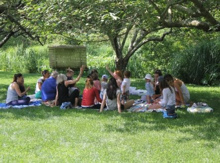SUMMER MUSIC CAMP:  Nature's Music – Tadpoles