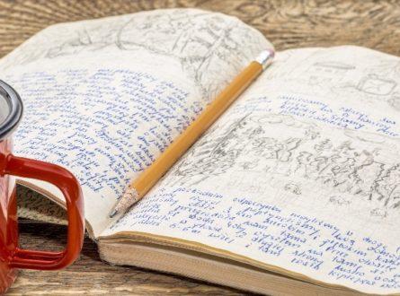 The Corona Journals