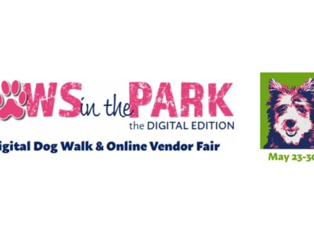 Paws in the Park: The Digital Edition