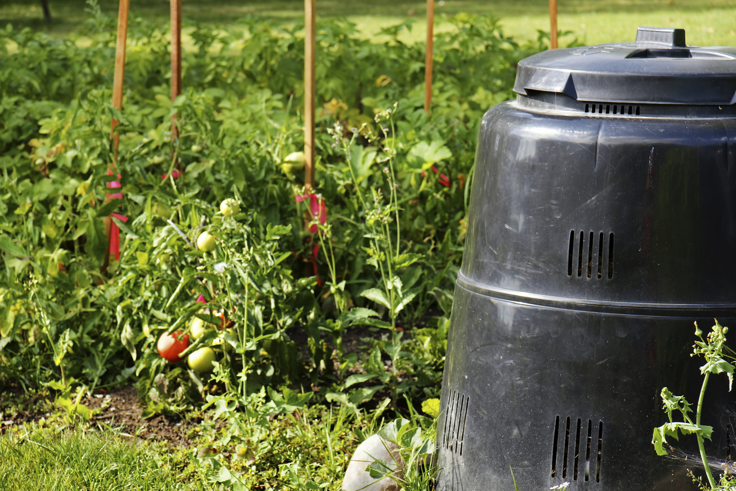 Compost is used to make compost tea.