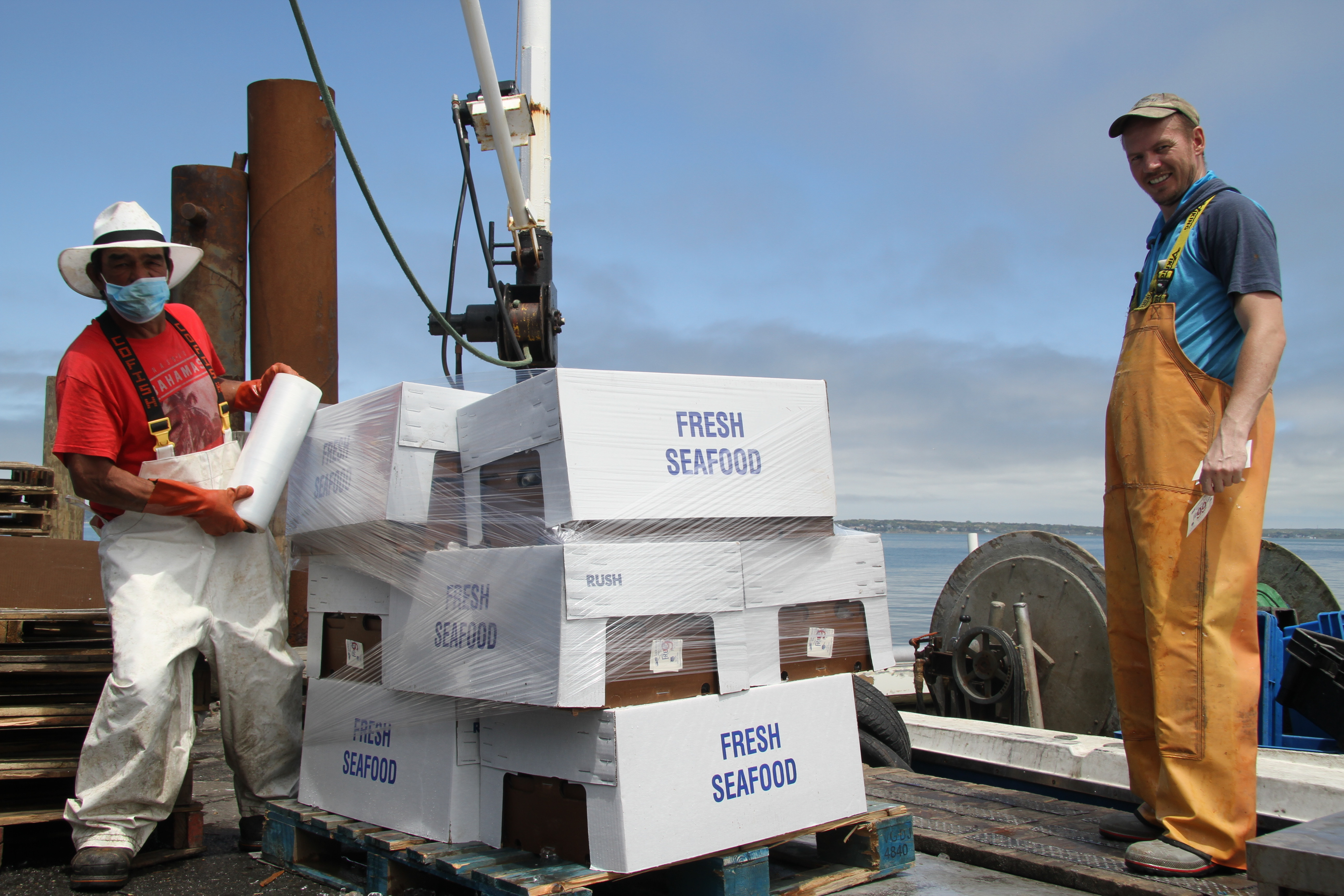 Commercial fishermen have diversified their outreach to markets and seafood retailers have thrived amid the coronavirus epidemic.