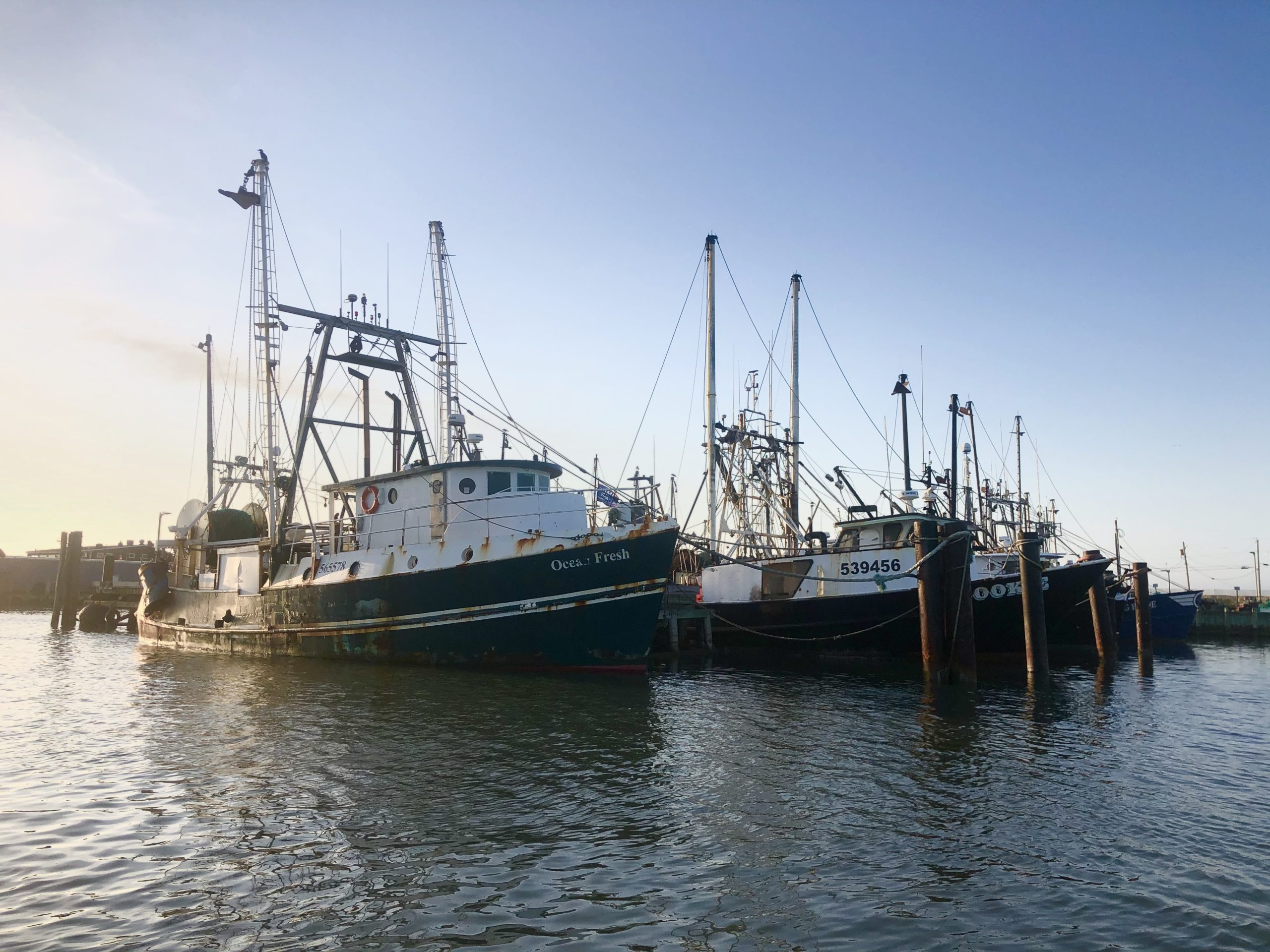 Commercial fishing fleets were hit hard by a collapse in market prices in the early days of the coronavirus epidemic. Prices have rebounded and more fishermen have diversified their outlets for selling their catch.