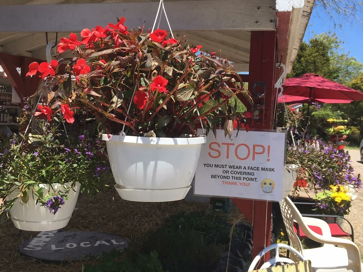 Warnings amidst the hanging flower baskets. KITTY MERRILL