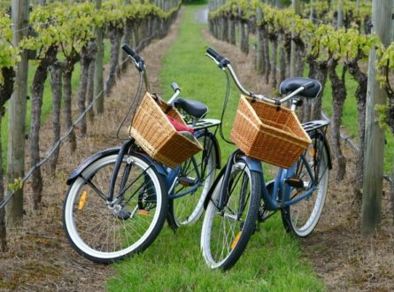 Private Guided Wine Country Bike Tour