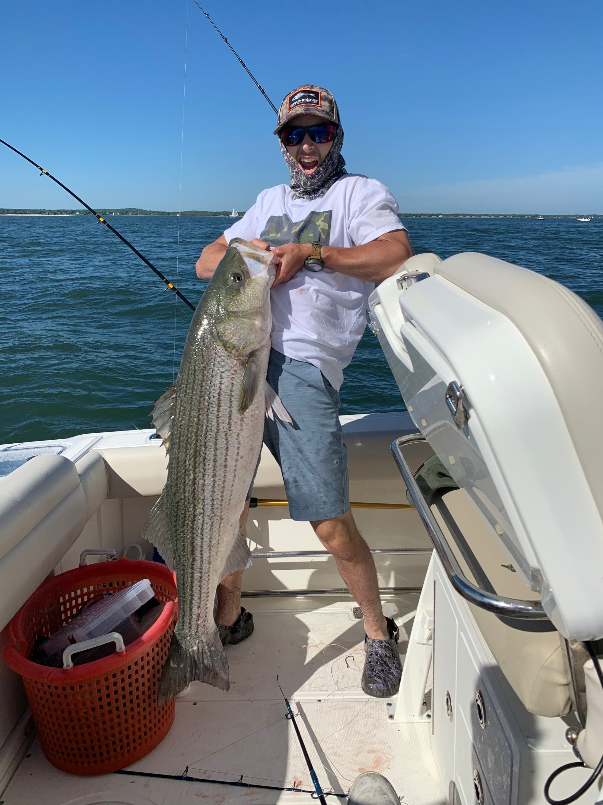 Big striped bass, like this one caught by Michael Finalborgo in the Peconics, have moved into East End waters in the last couple weeks.