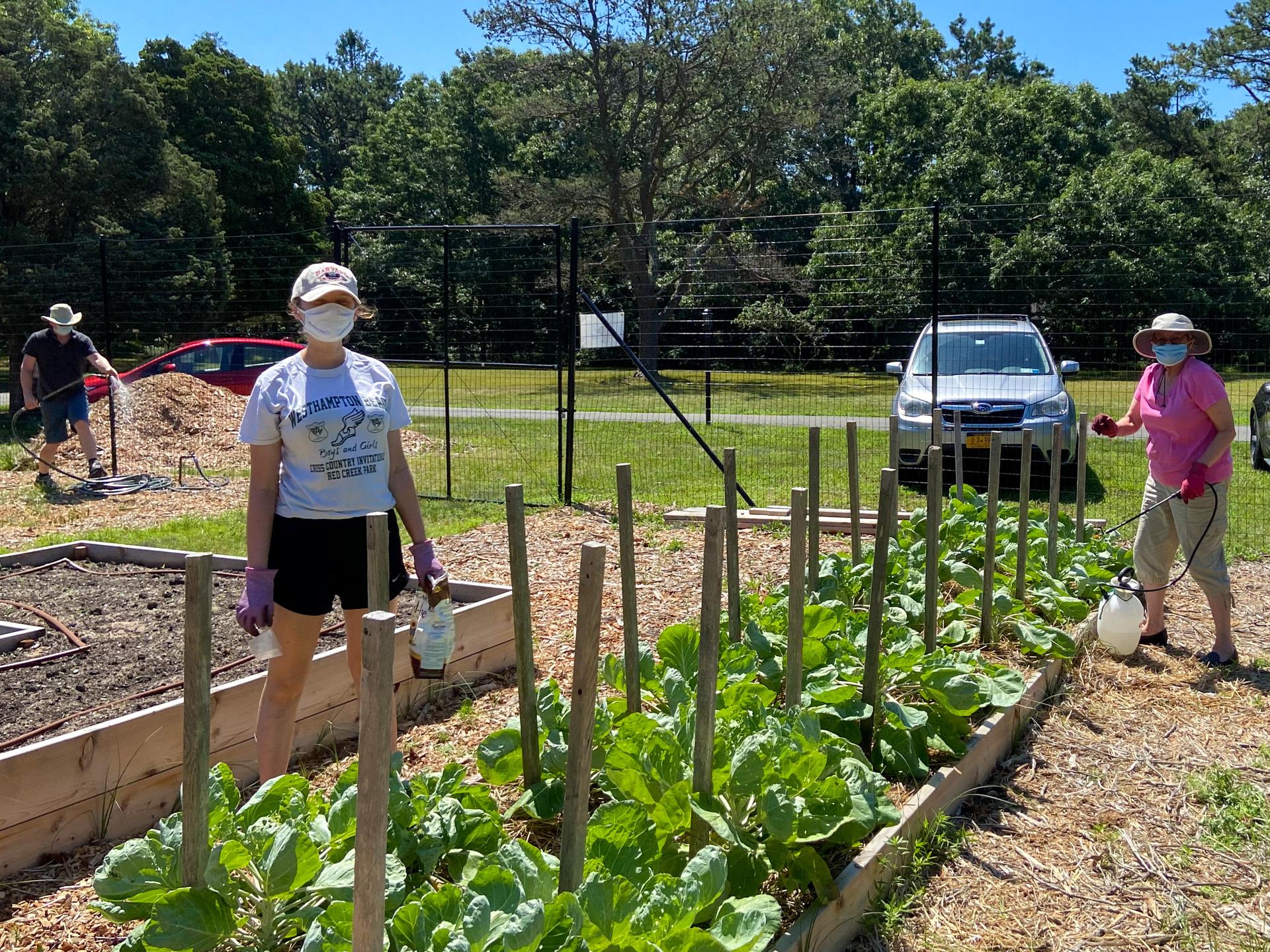 Good Ground Heritage Garden volunteers, July 12, 2020.