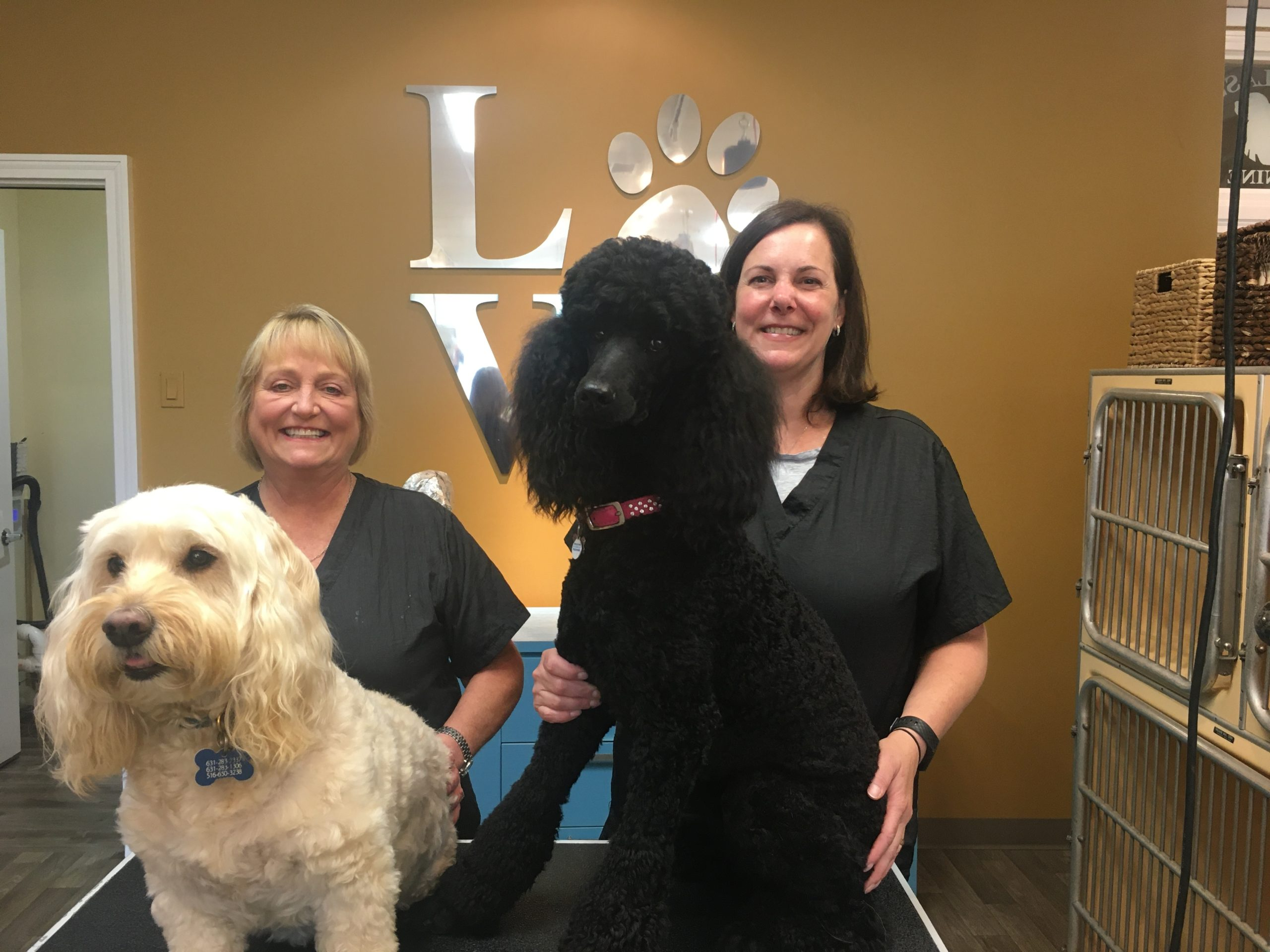 Kelly Scammell Humphreys (on the left), with her dog Mr. Parker, and new owner Jennifer Bockhaus (on the right), with her dog Beverly, at the Classy Canine in Southampton.