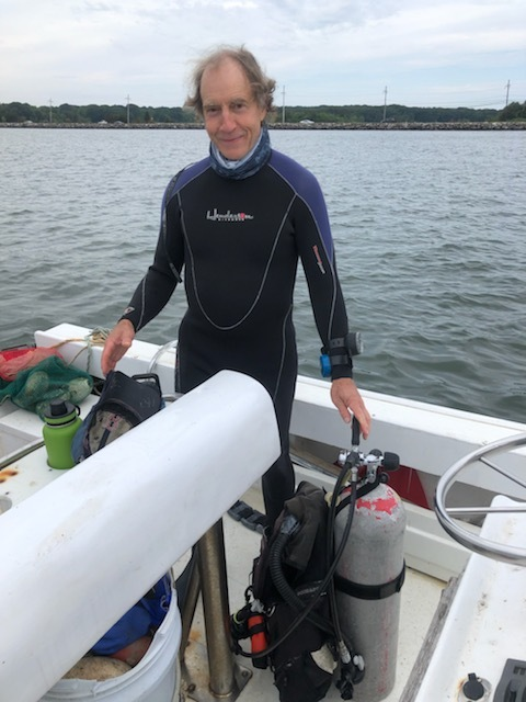 Dr. Stephen Tettelbach has been surveying scallops stocks in the Peconic Estuary this summer and has found high levels of mortality already even before the rescent blooms of