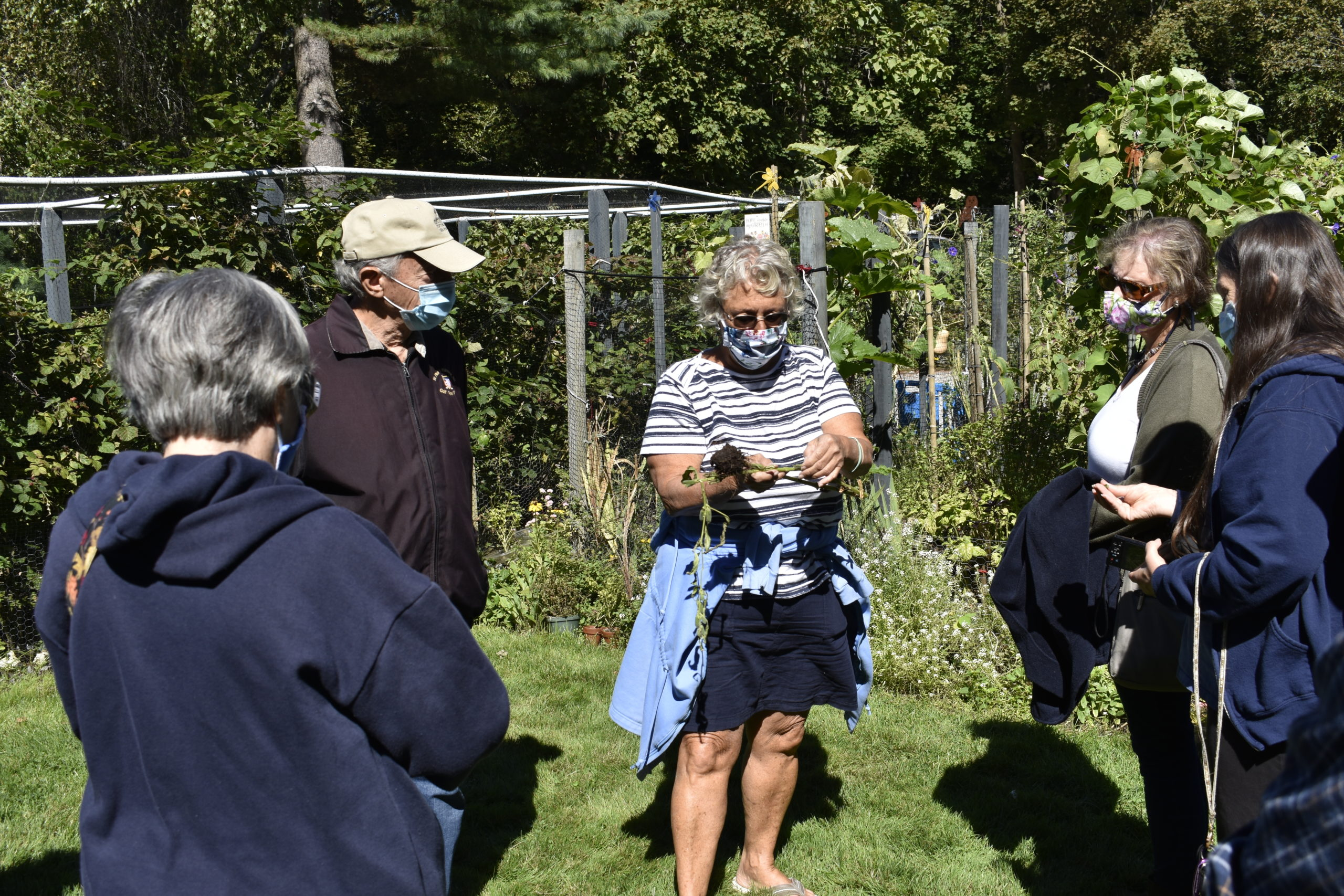 Marie Kinneary, holding seseme seed pods, gives a tour of her garden.