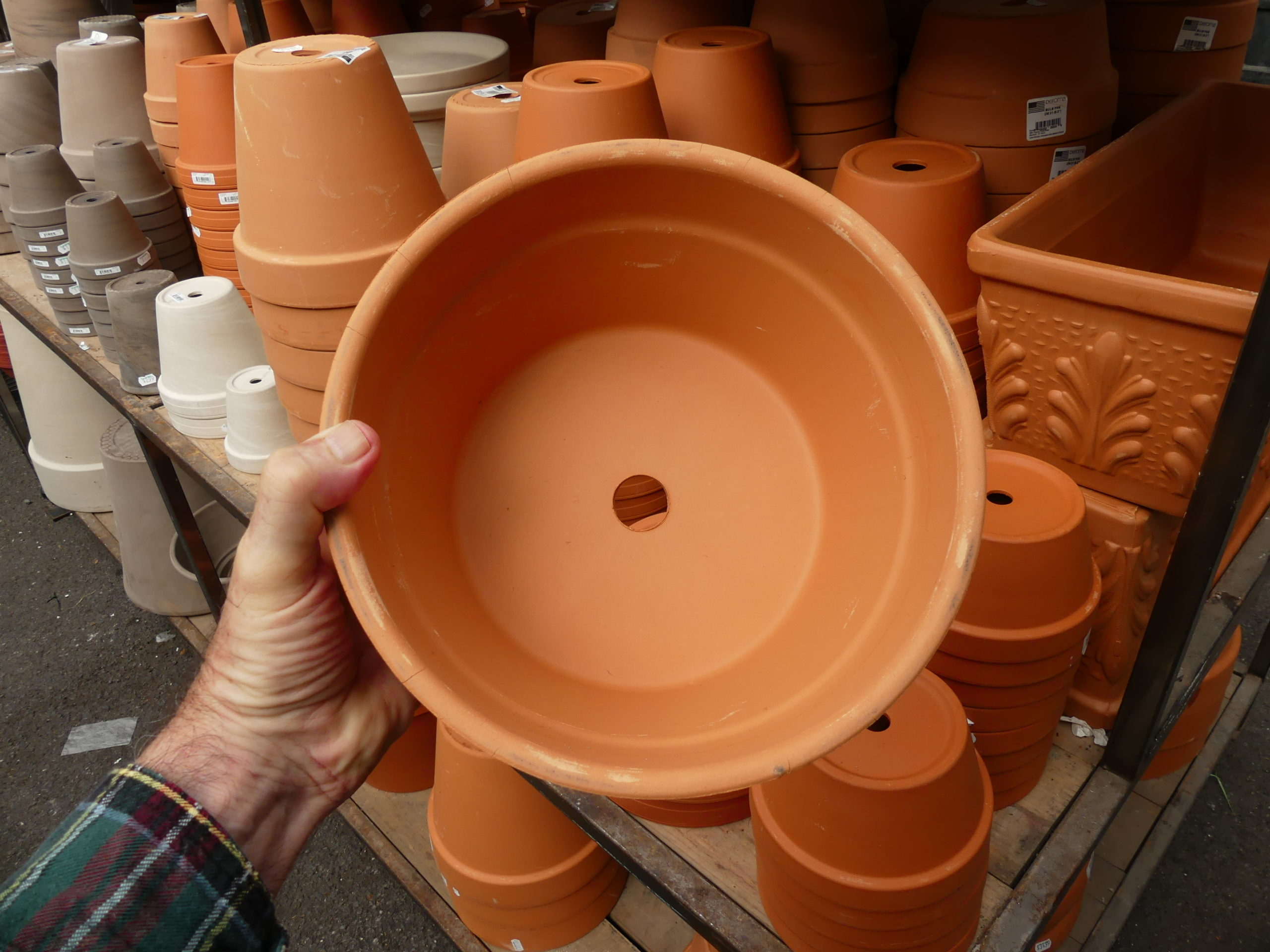 This 10-inch bulb pan (at a local garden center) might accommodate a single layer of tulips with some minor bulbs set below, but 11 tulips pretty much maxes out the space in this size pot. Bulb pans are available from 6 inches in diameter up to12 inches in diameter, and some garden centers have double-depth pots for layered plantings.
