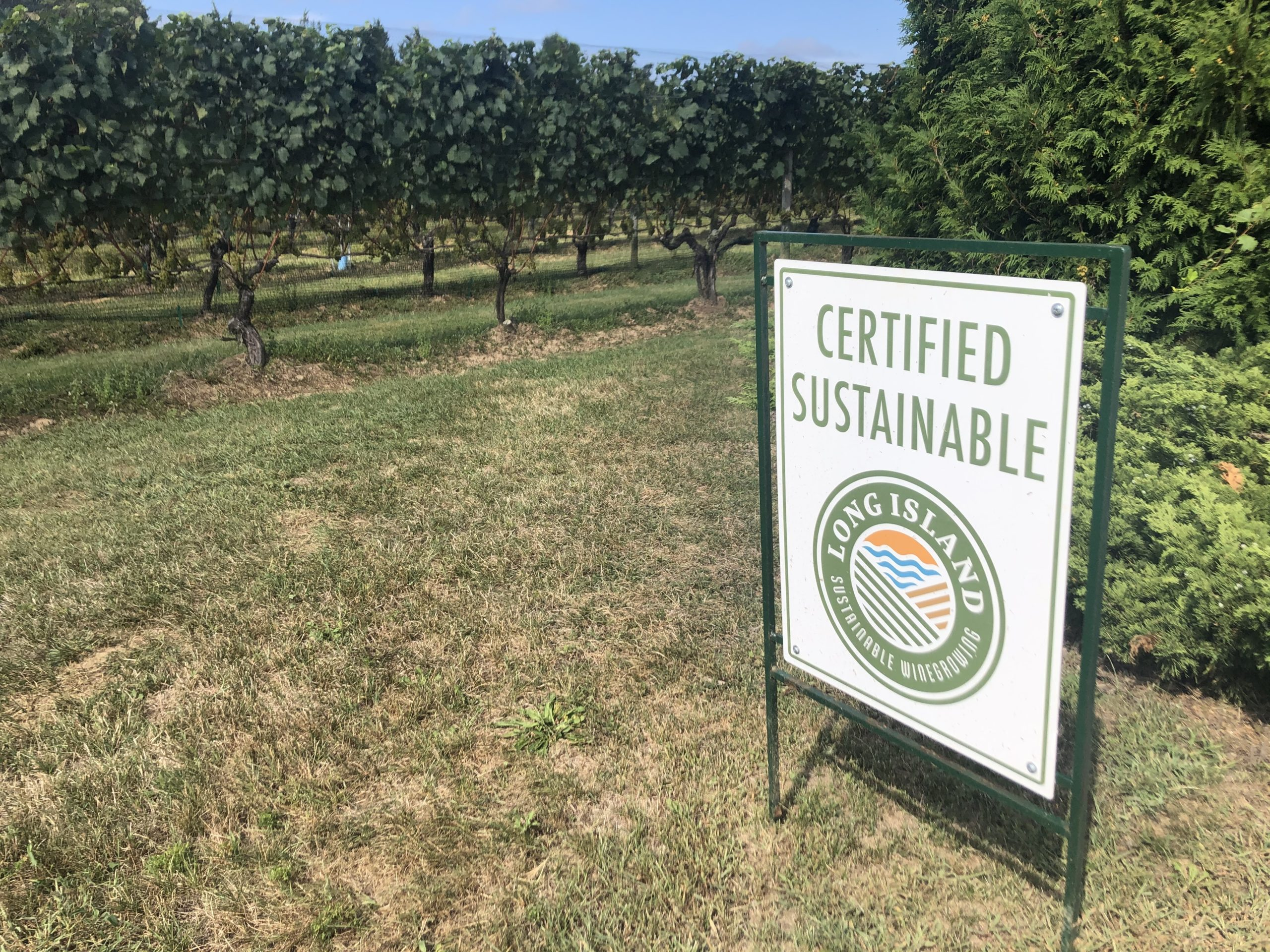 A certified sustainable sign at Wolffer Estate Vineyards.