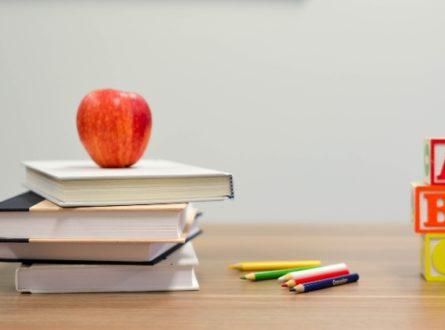 Online Homeschool October Elementary Class