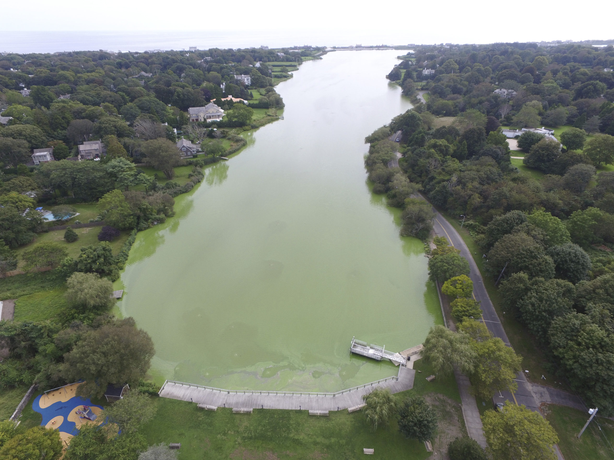 Lake Agawam in Southampton Village has suffered from chronic algae blooms, which are exacerbated by the heavy downpours that have defined the rainfall pattens in the Northeast in recent decades.