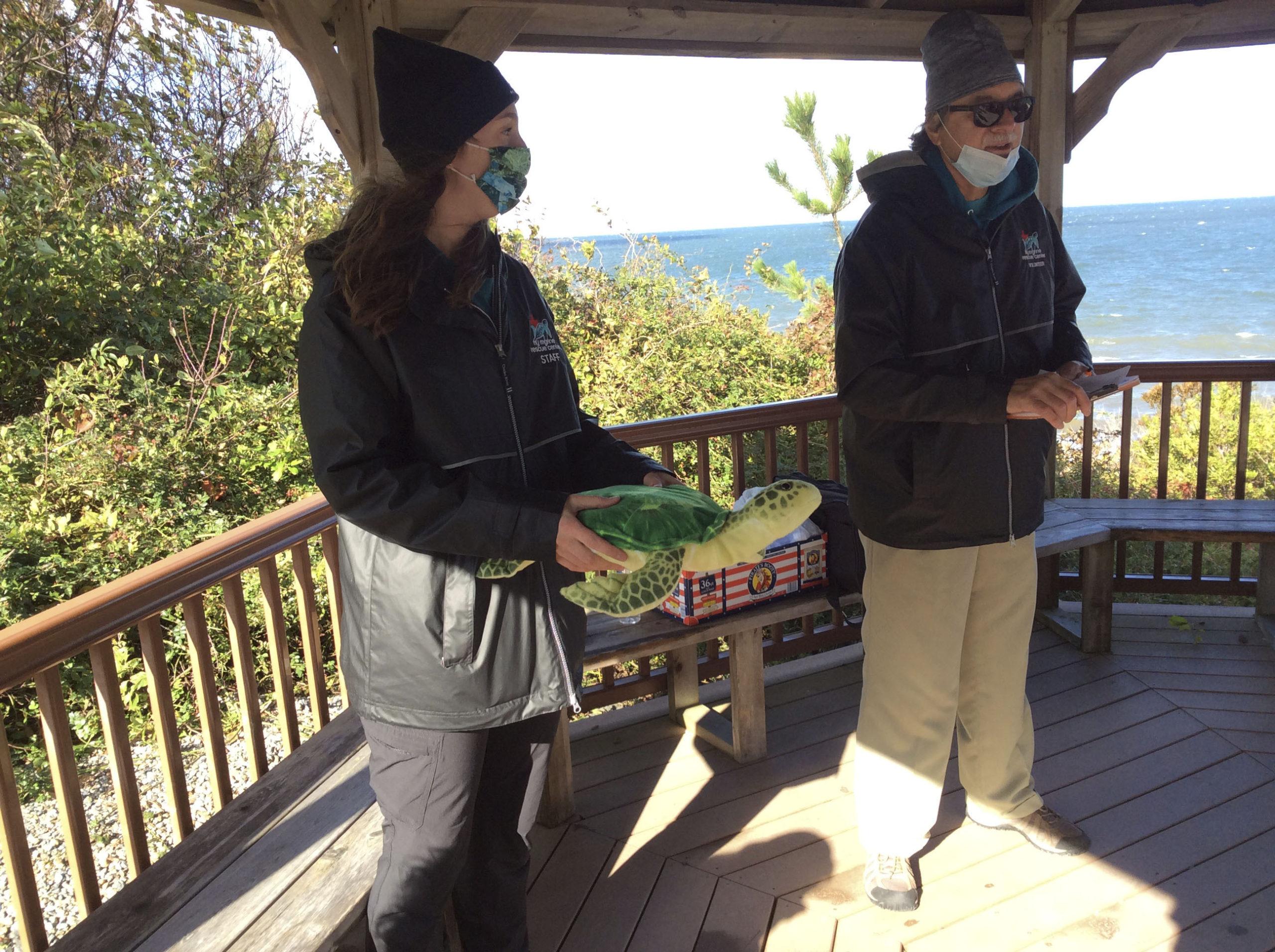 Katie Goulder and Steve Abbondondello talk about handling turtles.   BRYAN BOYHAN
