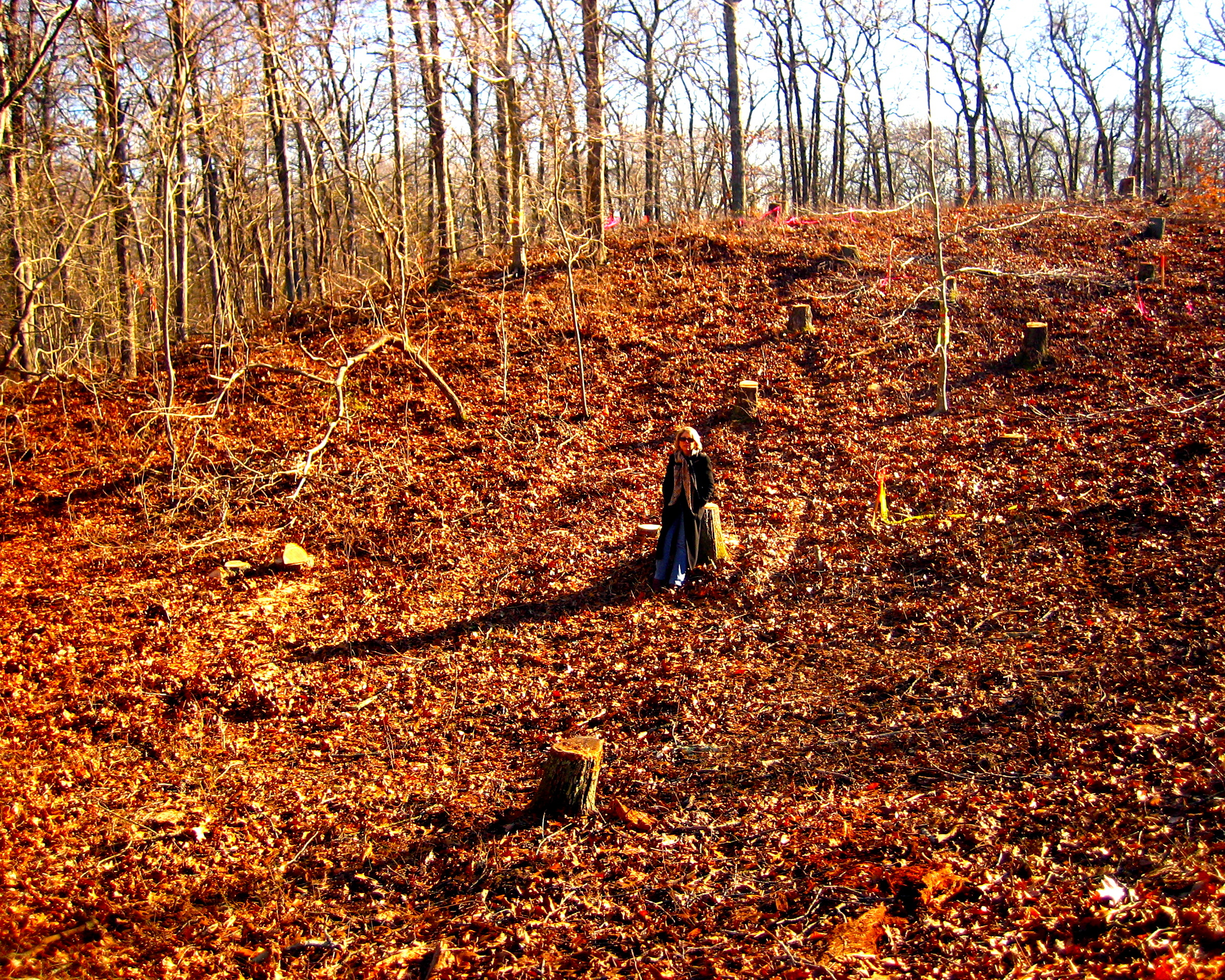Carol Merksamer sits on a stump on the natural slope of the kettle hole.