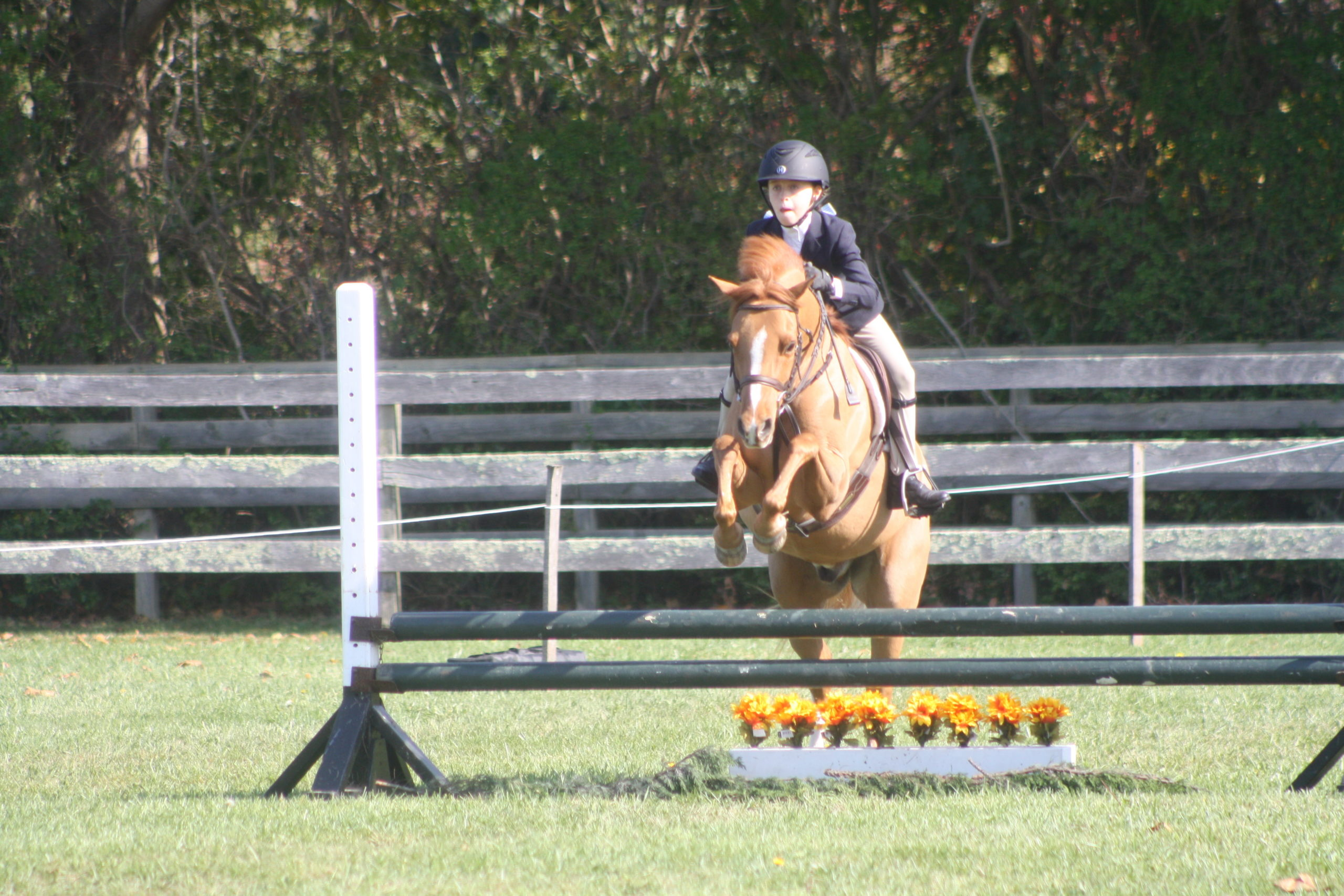 Bridget Harris and her pony, Maroon Bells, won the 2-foot division at the Wolffer Derby Horse Show on Sunday.  CAILIN RILEY