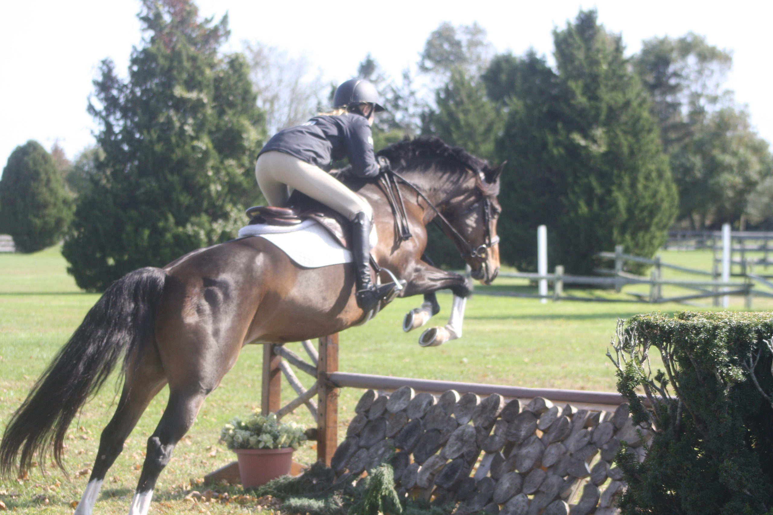 The jumps in the Grand Prix field are meant to mimic elements found in nature. CAILIN RILEY