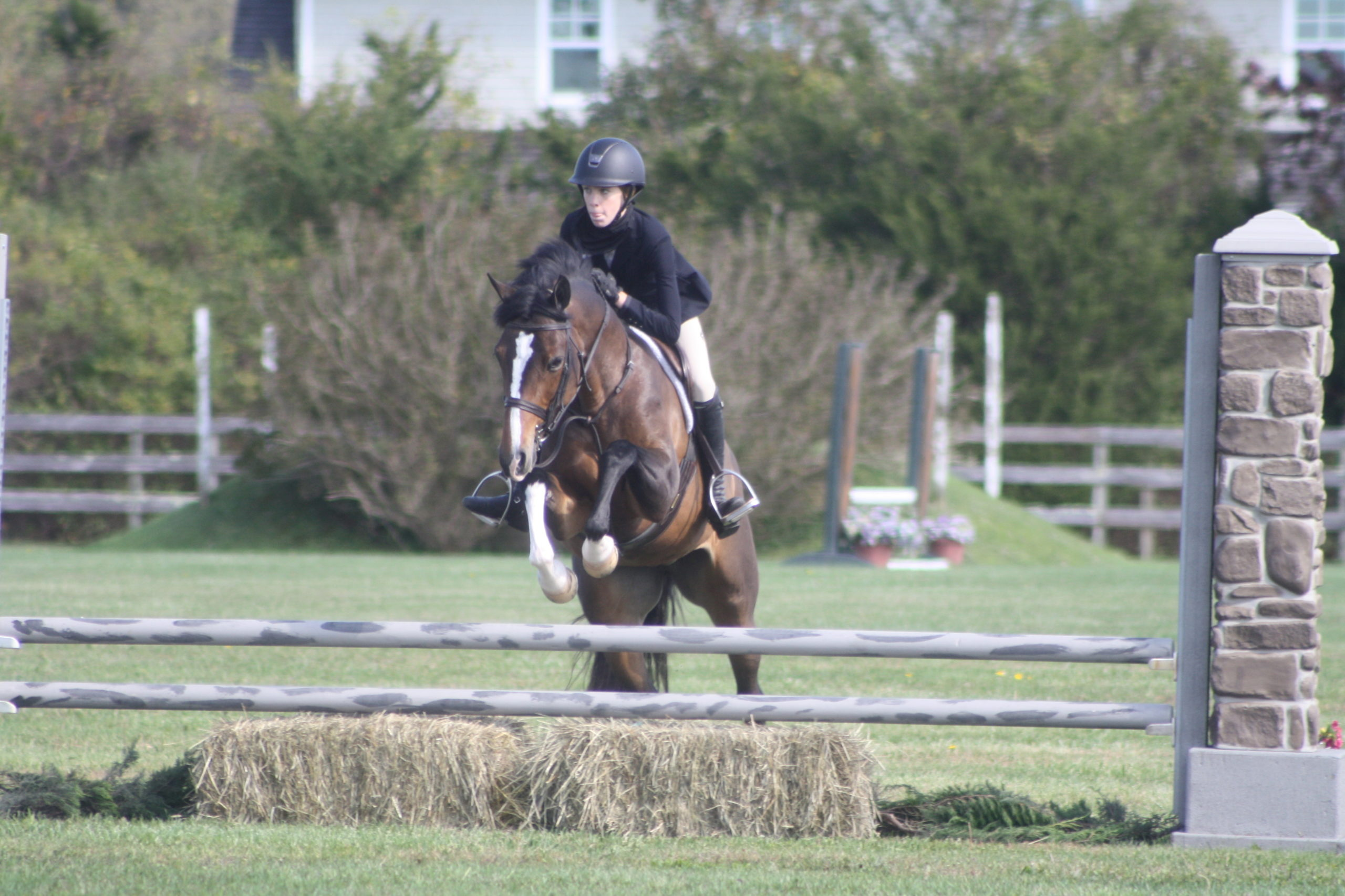 The jumps in the Grand Prix field are meant to mimic elements found in nature.. CAILIN RILEY