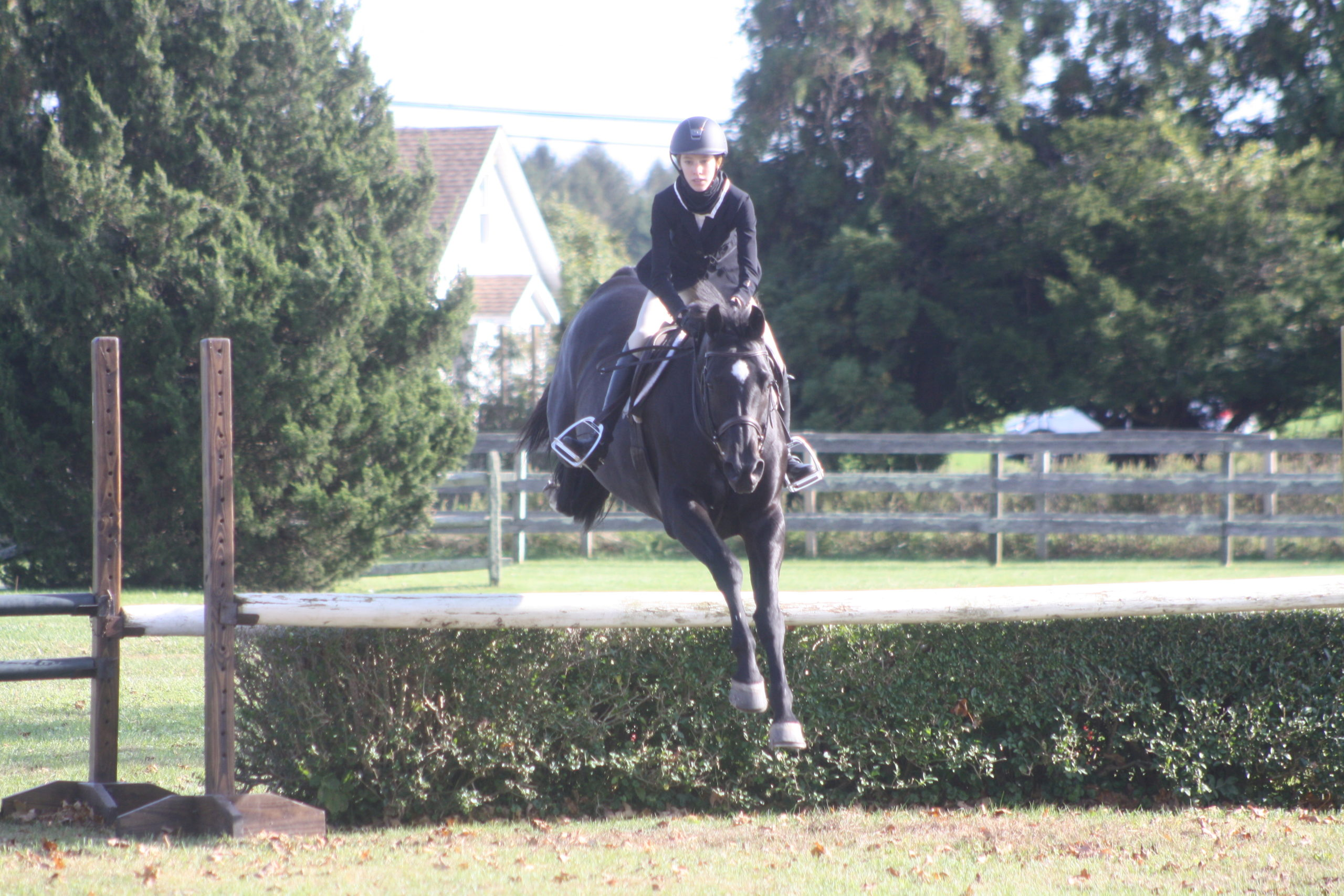 The Wolffer Estate Derby was held Sunday in Sagaponack. CAILIN RILEY