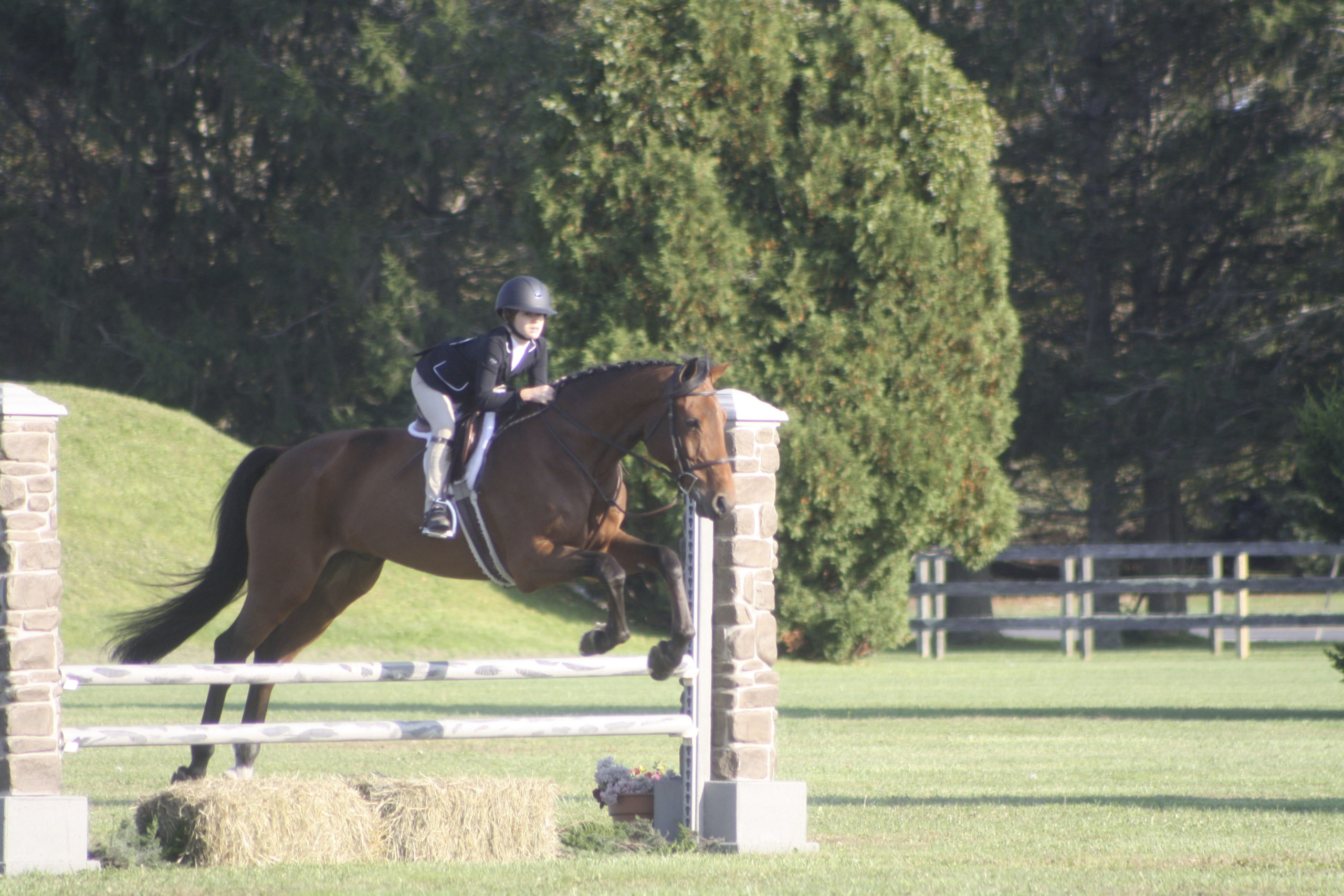 Montauk resident India Nye-Wenner and her horse, Danny, took the blue ribbon on the 3'3/3'6 division at the Wolffer Derby on Sunday. The 12-year-old trains with Ben Tula at Wolffer Estate Stables.    CAILIN RILEY