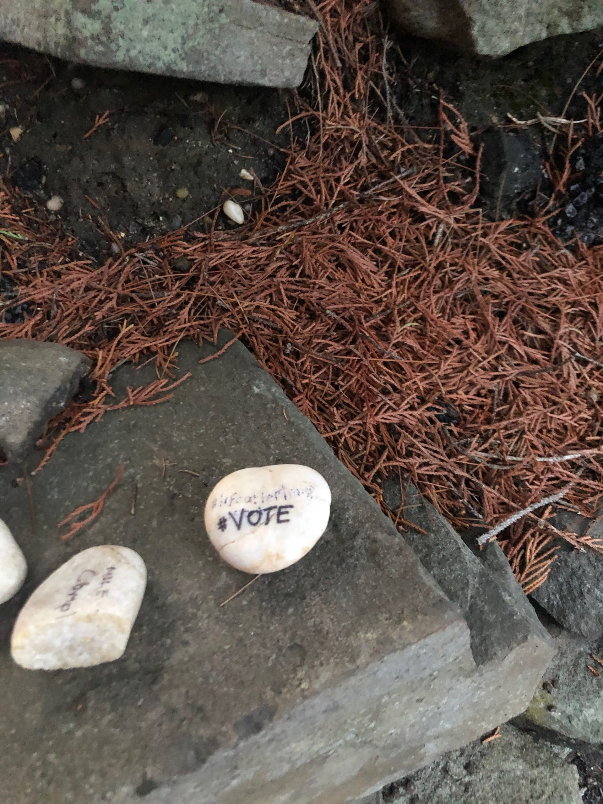 A rock with the word