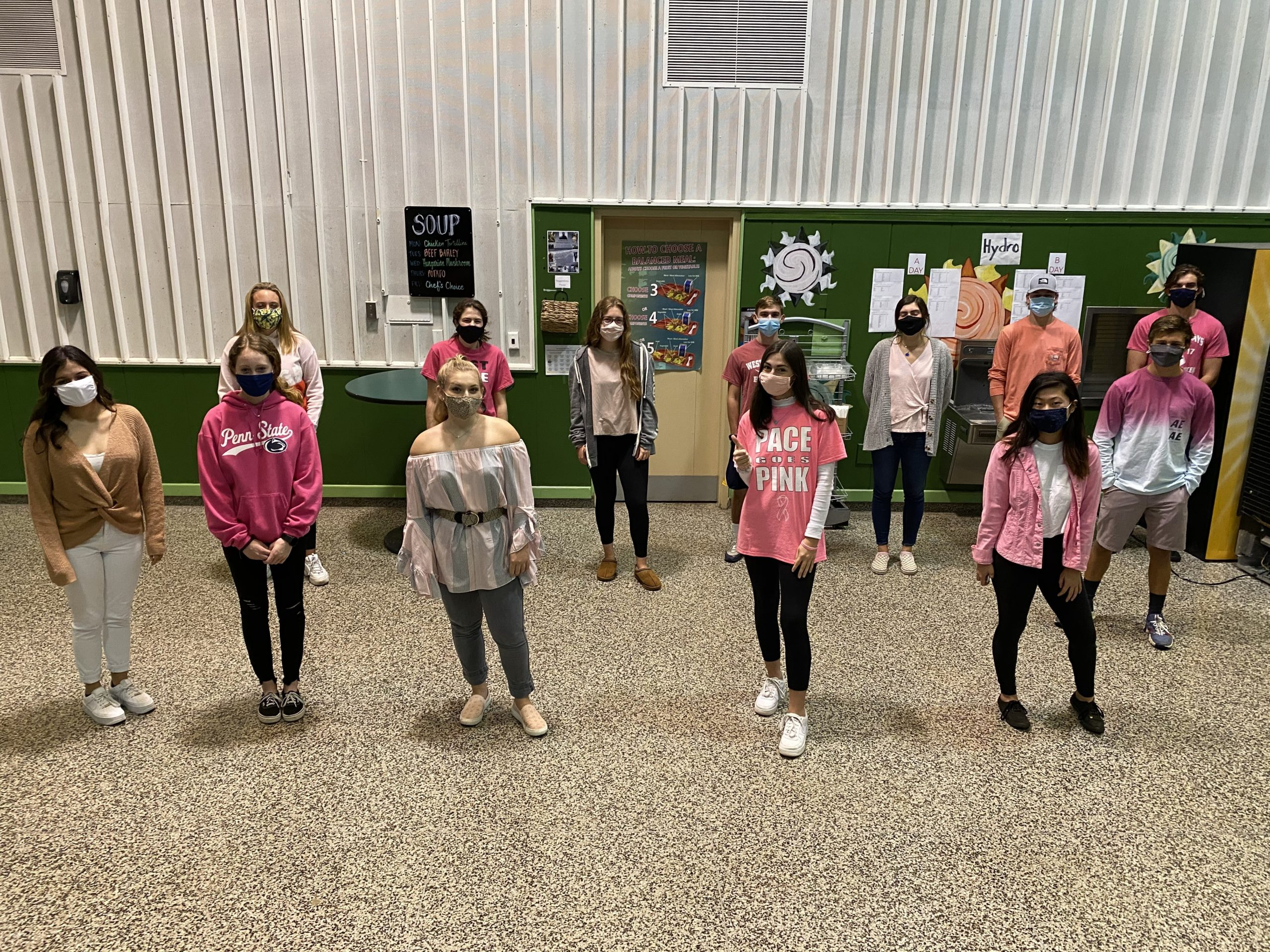 To raise awareness about breast cancer, members of the Westhampton Beach High School National Honor Society sponsored a Wear Pink to School campaign. On October 22 and 23, all students were encouraged to wear pink in acknowledgment of Breast Cancer Awareness Month.