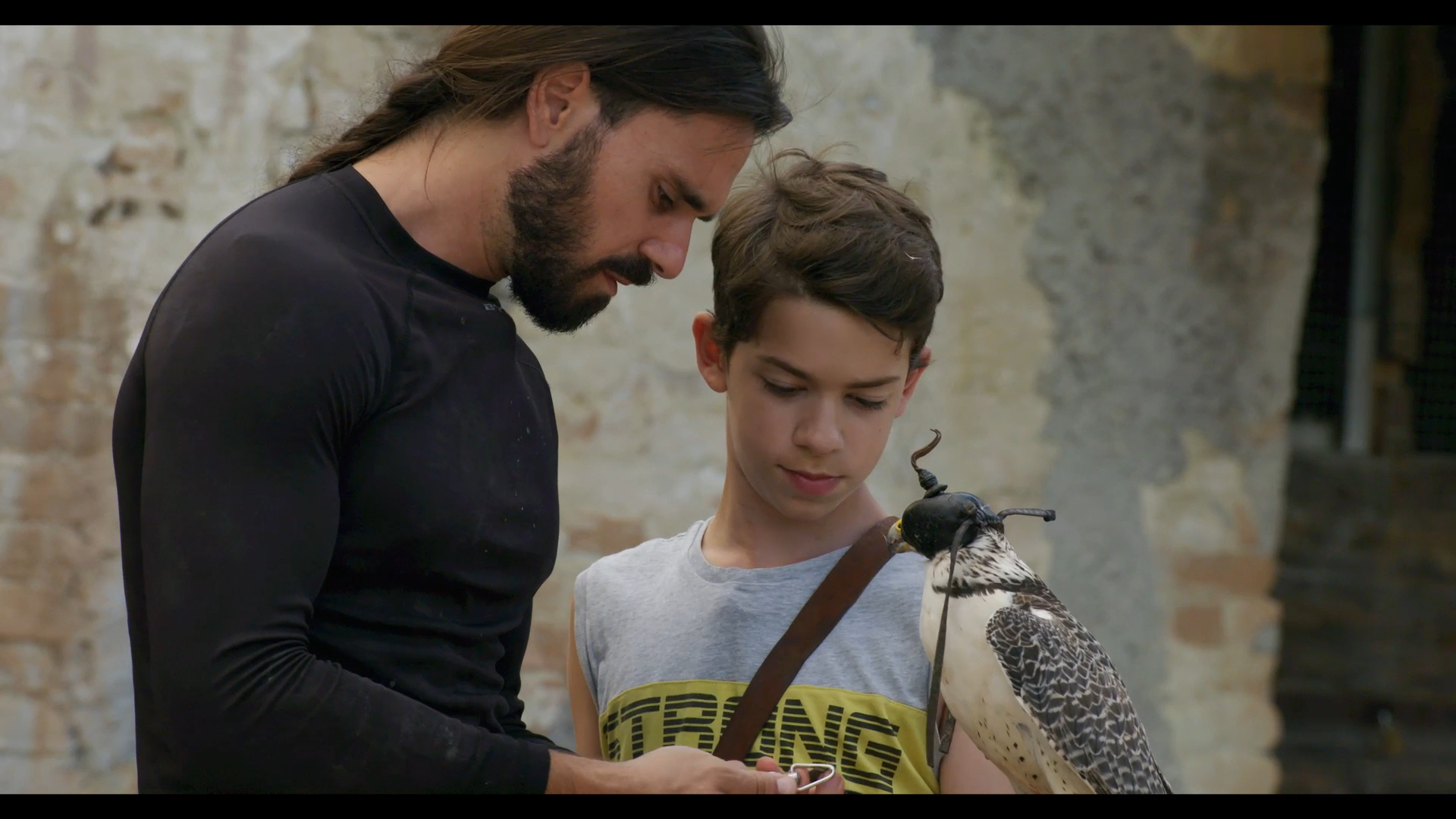 Giovanni Granati and his son, Angelo, working with a falcon in Italy.