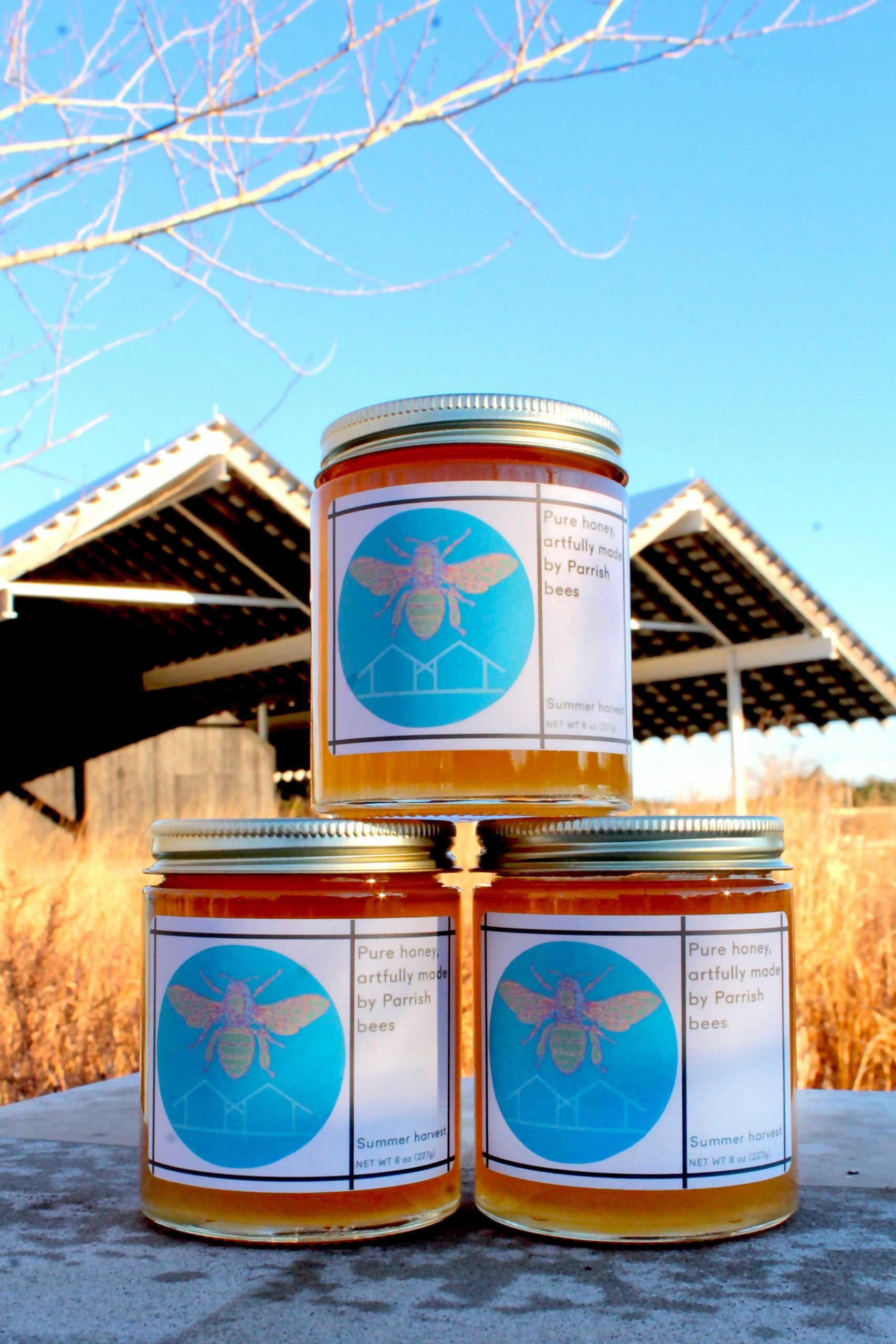 Honey from the Parrish Art Museum's own hives is jarred and ready to go.