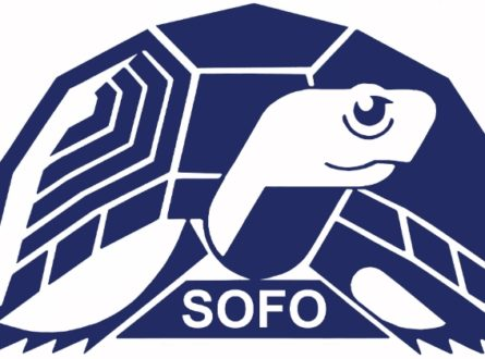 SOFO: Live Animal Zoom Presentation: The Tides of March: Crabs and other Critters in the Surf