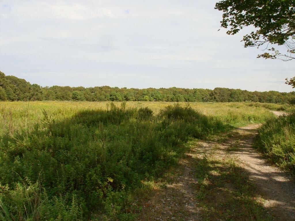 Southampton Town acquired 160 acres in Speonk last year using CPF revenue.