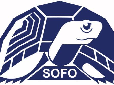 SOFO: Birding with Frank – Winter Sea Ducks: Adults/ Teens