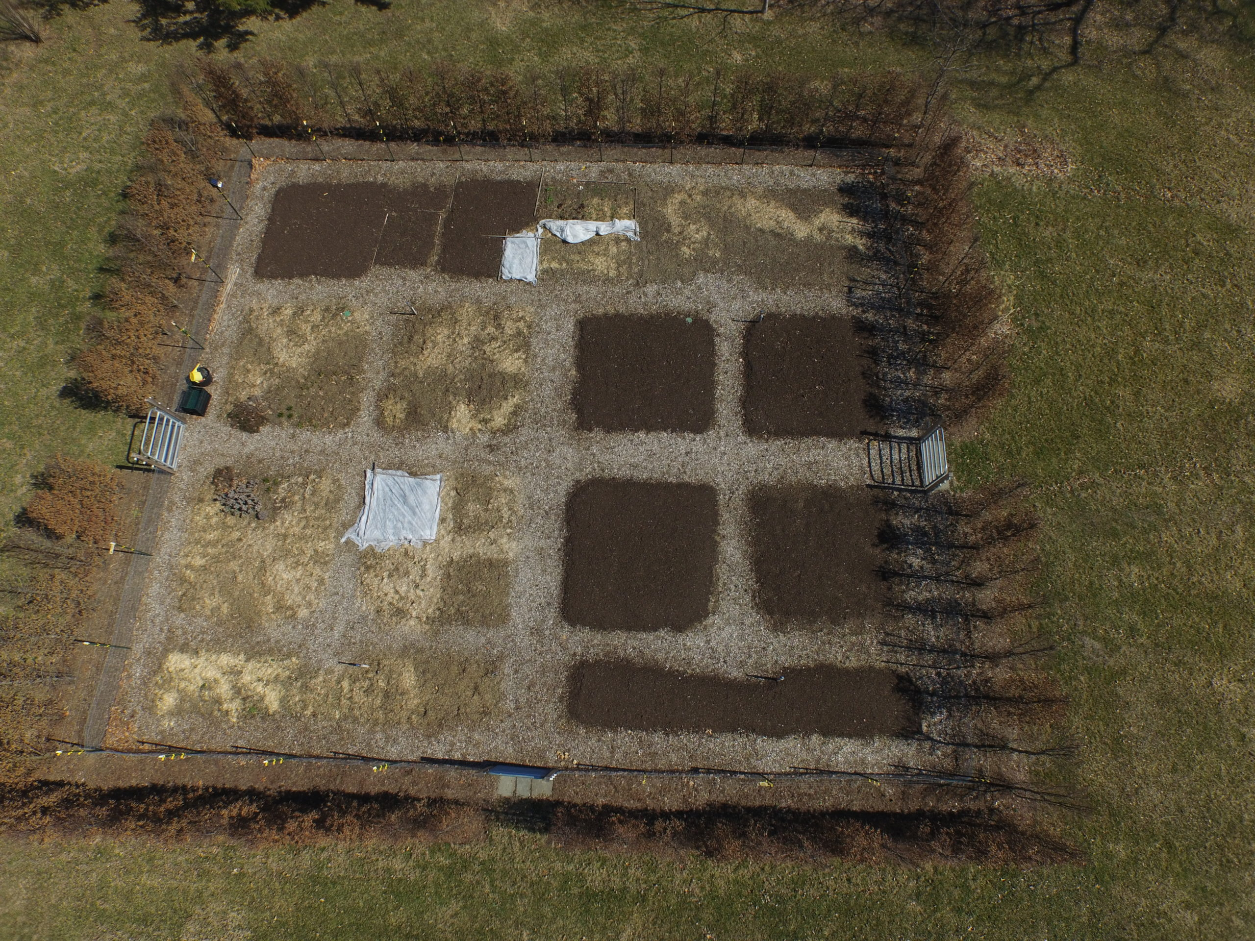 A drone's eye view of a large vegetable garden surrounded by a hornbeam hedge with an electric fence on the inside of the hedge. The bottom left bed is asparagus, which can't shade any other garden plants.  Each bed has its own trickle irrigation with hose bibs down the center aisle (top to bottom).  A better layout would have yielded more efficient use of space, but in this case