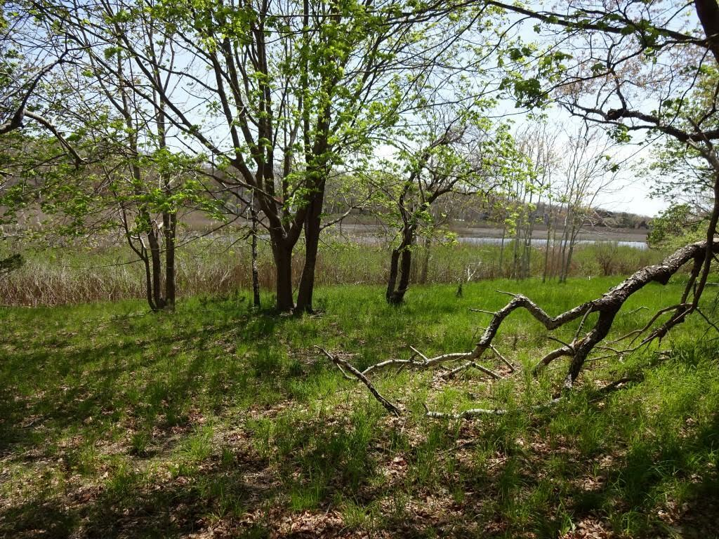 A property on Brushy Neck Creek in Westhamtpon  was added to Southampton Town's CPF holdings in 2020.
