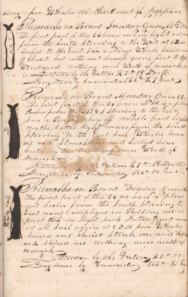 A page from the whaling log of the ship, Daniel Webster  on a voyage from Sag Harbor to the Pacific, 20 August 1833 - 12 May 1837 (dates contained in this journal are 27 August 1833 - 19 September 1833); owned by E. Mulford of Sag Harbor, commanded by Captain Philetus Pierson.  COURTESY OF THE EAST HAMPTON LIBRARY, LONG ISLAND COLLECTION
