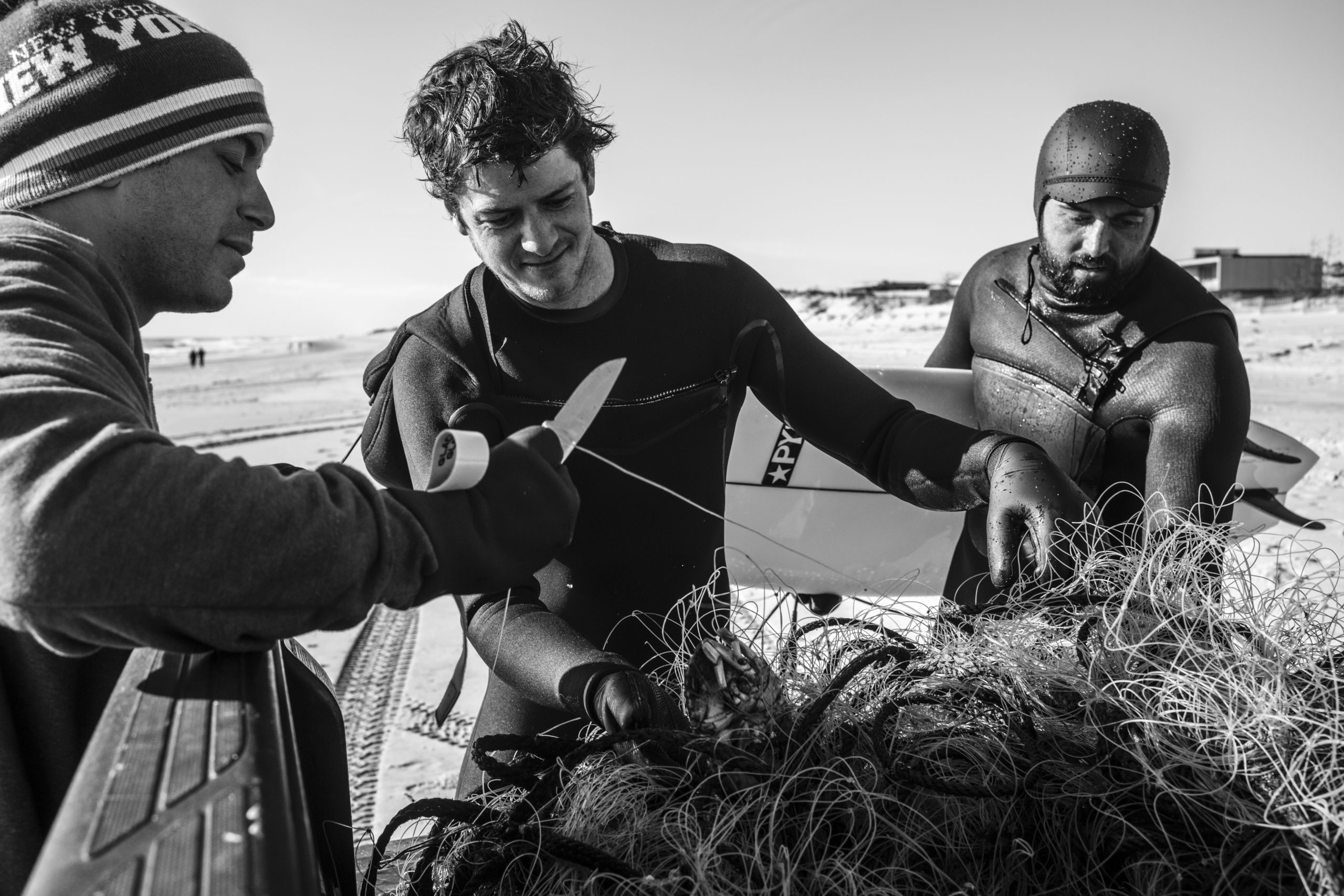 Local surfers, Brian Pollak, Will O'Connor, and Marley Doherty, untangle Peekytoe Crabs from an old fishing line that washed up on shore in Southampton on Sunday, December 27.     LORI HAWKINS