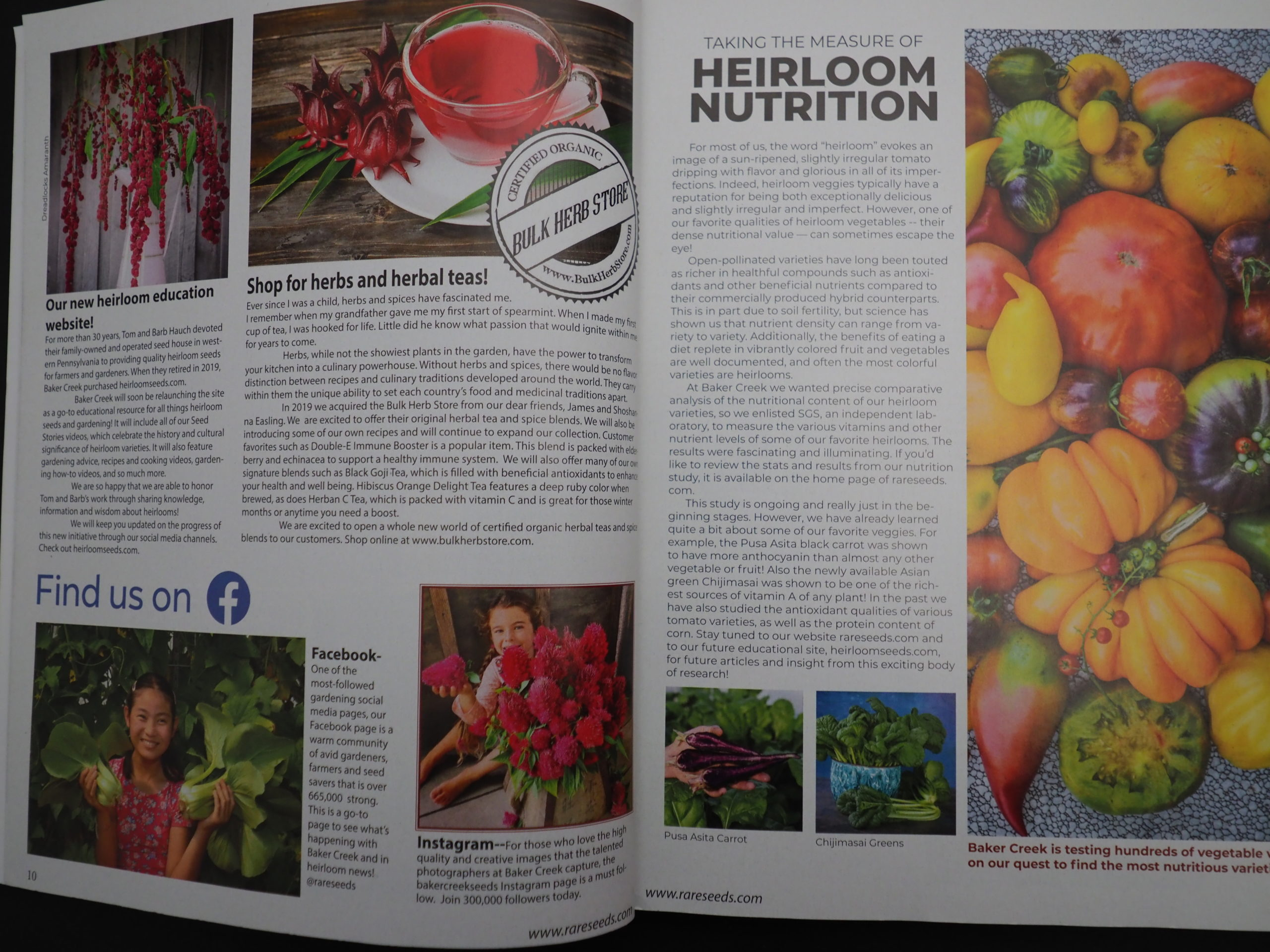 Nearly an inch thick, the 2021 Whole Seed Catalog is a must-have encyclopedia when it comes to heirlooms and open-pollinated seeds as well as pages and pages of growing advice.