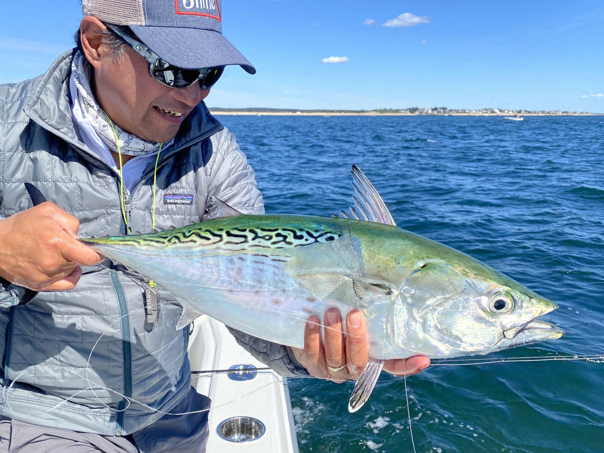 East Hampton fly fisherman Luyen Chou and longtime Montauk fly fishing guide David Blinken have teamed up to organize a virtual seminar series starting this week called