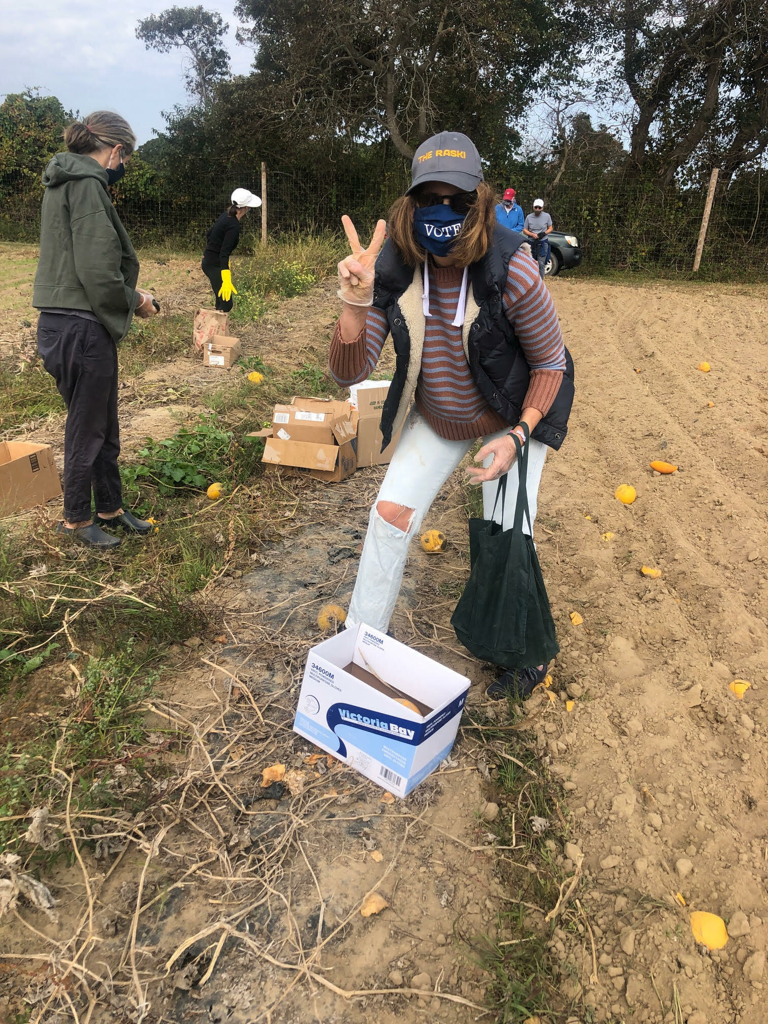 Members of Temple Adas Israel's social justice committee gleaned produce from a farm to be donated to local food pantries. COURTESY TEMPLE ADAS ISRAEL